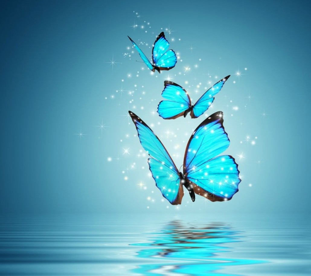 blue_butterflies